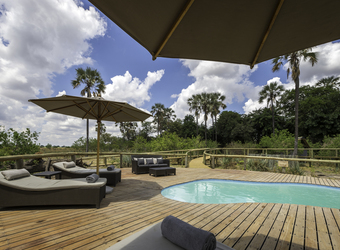 Seba Camp, inviting light blue pool enclosed by burnished wooden deck andlounge chairs with umbrellas in front of the looming green trees, Botswana