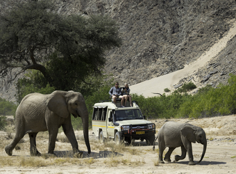 Photo: The Safari Experience