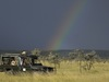 Kicheche Bush Camp, safari vehicle is parked in the grasslands searching for wildlife with a rainbow behind them against a dark sky, Kenya safaris