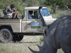 Mombo Camp, African rhino, white rhino, rhino horns, safari vehichle, close nature encounter, Botswana, Africa safari