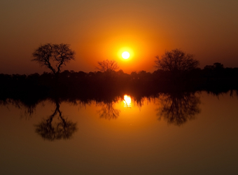 Photo: Conservation in Botswana