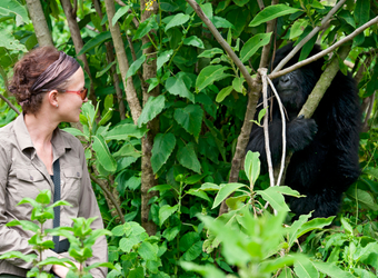 Photo: Uganda Safari Highlights