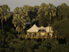 Kwetsani Camp, furnished tere house chalet, house on stilts in Africa, surrounding jungle almost enveloping house, Botswana, Africa safari