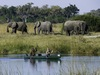 Savuti, pair of safari guests glide in a grooved canoe through the waters as a small herd of elephants on the bank searching for their food, Botswana