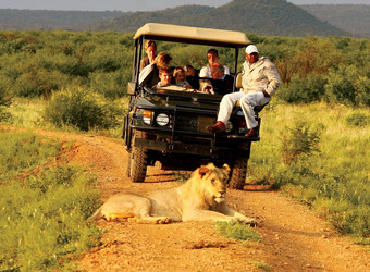 Safari guests hang out of the back of a safari vehicle posing for a picture on a safari In Madikwe Game Reserve, South Africa