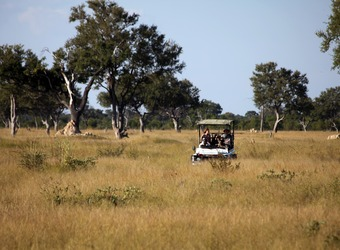 Safari vehicle trundles through the desert bush with safari guests in search of wildlife in Hwange National Park, Zimbabwe