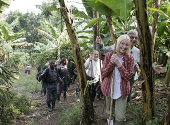 Group of tourists led by their guides follow the mountain gorillas trail through the forrest hoping to catch a glimpse in Bwindi Impenetrable Park
