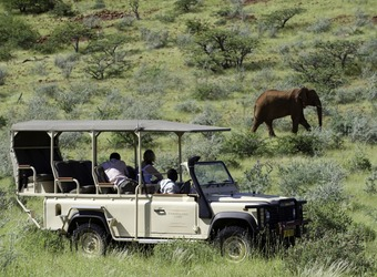 Safari tourists take shots from a safari vehicle of a solitary elephant walking through the bush in Damaraland, Namibia