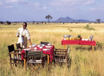 A safari camp staff member sets up a luxury picnic lunch in a secluded, remote, private section of Meru National Park, Kenya
