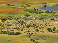Botswana-main