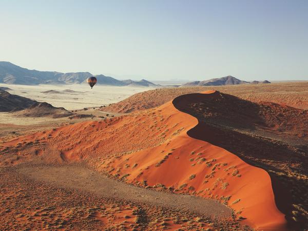 Large_kulala_desert-7