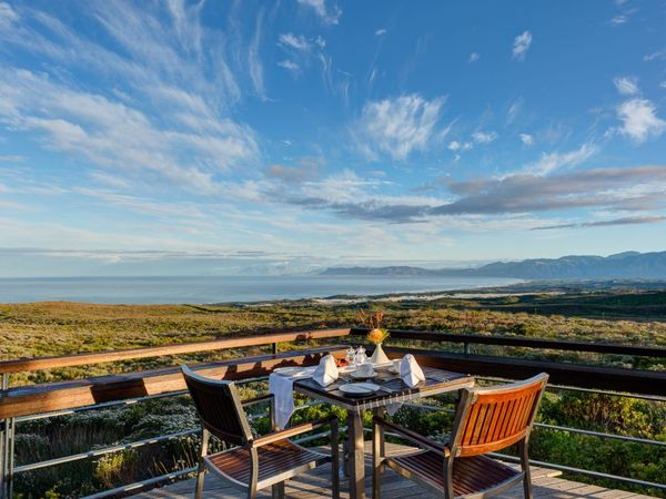 Large_pic5657grootbos-forest-lodge-luxury-accommodation__1_