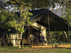 Little Governor's Camp, multitude of varying hues of greens in the surrounding wilderness encircling the green-roofed safari lodge in Kenya, Africa