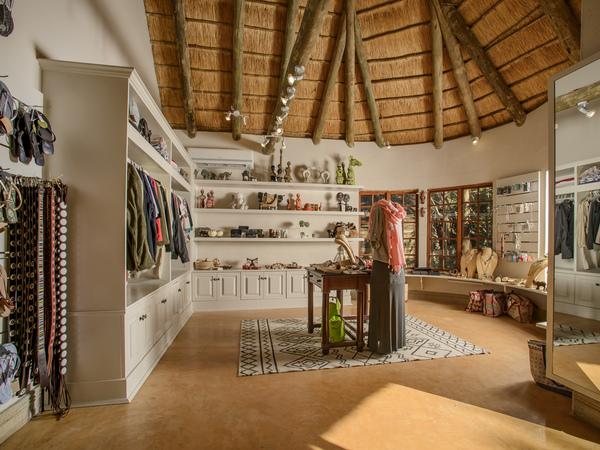 Large_savanna_-_17__curio_shop_