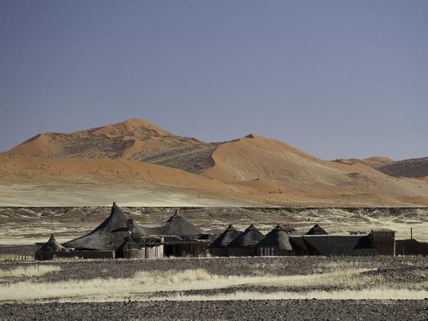 Large_kulala_desert-4