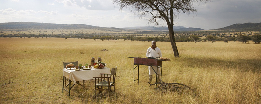 Private picnic dining offered in the middle of the Serengeti's plains, secluded private luxury dining, personal chef, sheltering tree, African safari