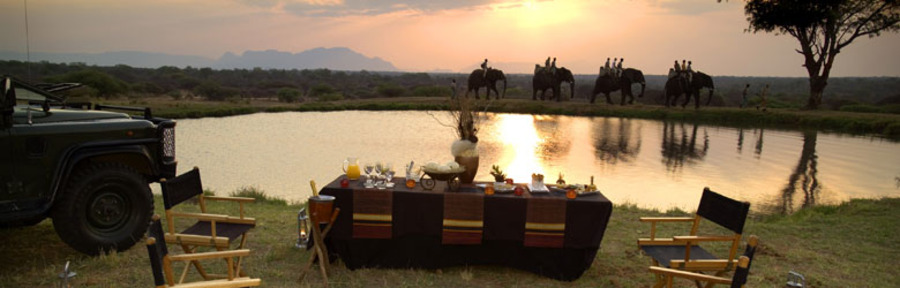 An elephant backed safari walk, four elephants with guests reflected into the water at sunrise, a scrumptious breakfast by a pristene watering hole