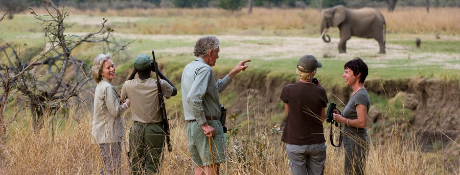 African safari, a group of guests with a tour guide views an elephant at close range, proper safari gear, smiling faces at Kuyenda safari camp