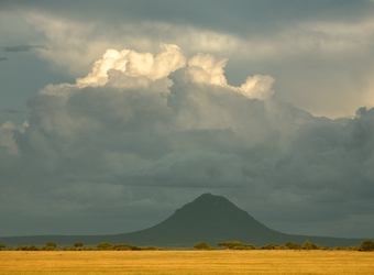 Photo: Arusha/Home