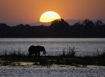 Photo: Harare/Home