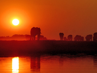Photo: Okavango Delta